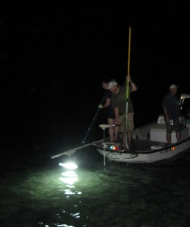Bl200 and dc100 underwater fishing lights for Boat lights for night fishing